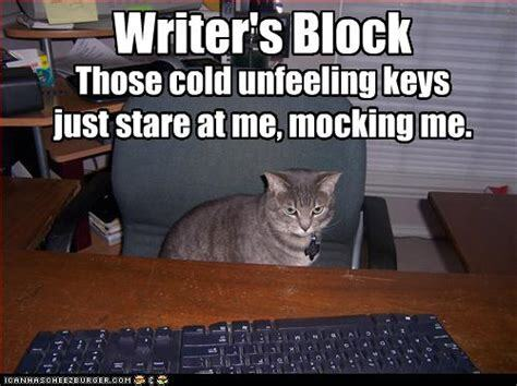 A cat staring at a keyboard. He has writer's block.