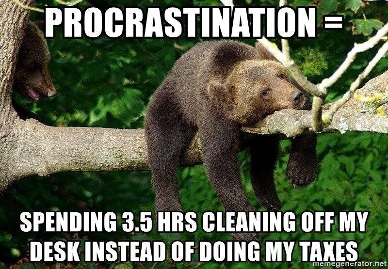 Image of a bear laying on a tree branch, bemoaning procrastination.